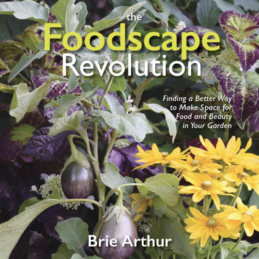 Foodscape book cover